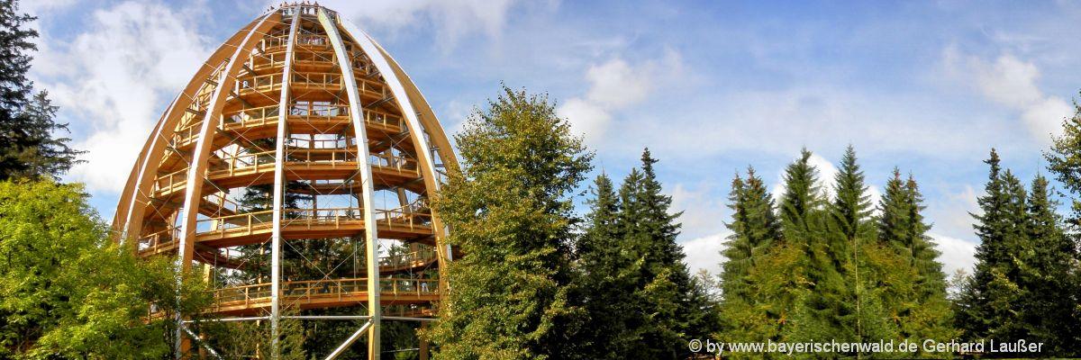 Bayerischer Wald Sehenswürdigkeiten und Ausflugsziele