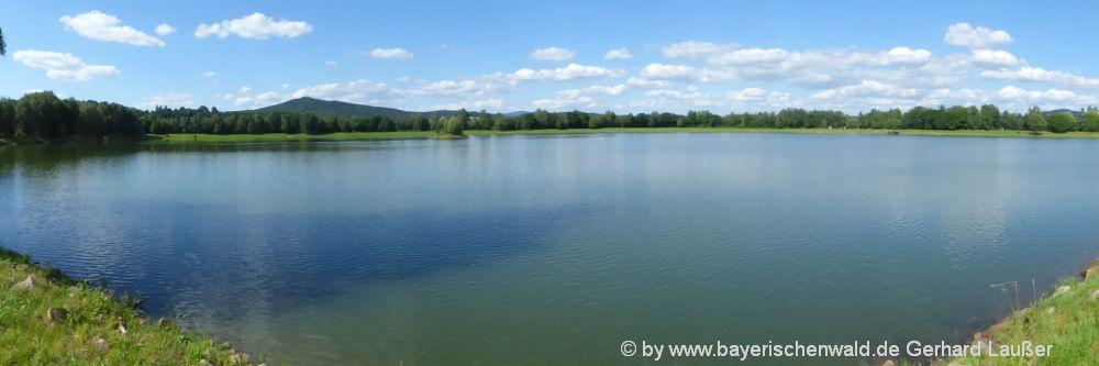 Freizeitmöglichkeiten Bayerischer Wald Angeln im Satzdorfer See bei Cham