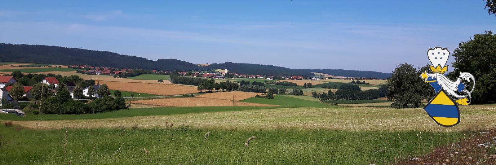 Bayerischer Wald Hotel Türlinger Landkreis Cham in der Oberpfalz